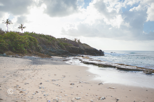 Landscape portrait of Whistle Beach St. Croix, USVI